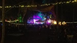 Night at mushroom stage,