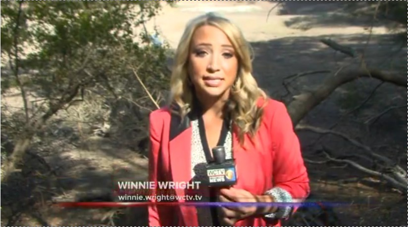 824x459 Winnie Wright of WCTV, in GWC Dirty Dozen Sabal Trail on WCTV, by John S. Quarterman, for WWALS.net, 26 November 2014