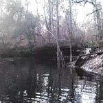 640x480 Movie: MOL09D (12M), in Statenville to Sasser Landing on the Alapaha River, by John S. Quarterman, for WWALS.net, 15 February 2015