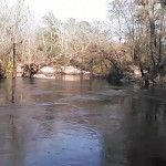 640x480 Movie: Smooth (3.9M), in Statenville to Sasser Landing on the Alapaha River, by John S. Quarterman, for WWALS.net, 15 February 2015