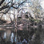 640x480 Road up, in Statenville to Sasser Landing on the Alapaha River, by John S. Quarterman, for WWALS.net, 15 February 2015