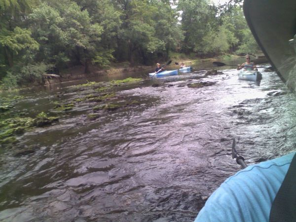 600x450 Down the rapids is easier than up 30.7954483, -83.4526749, in Sabal Trail @ Withlacoochee @ US 84, by John S. Quarterman, for WWALS.net, 28 August 2015