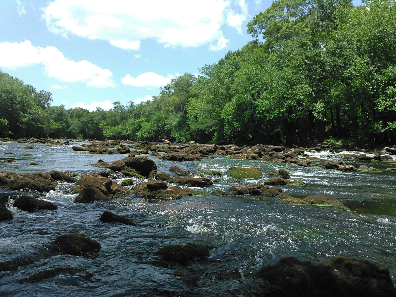 1600x1200 State Line Shoals 30.6345577, -83.3415604, in Nankin to Madison Hwy, Withlacoochee River, by John S. Quarterman, for WWALS.net, 9 July 2016