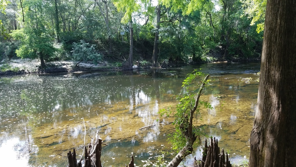 1008x567 Across to STT Lowndes County sign, in Sabal Trail, Brooks County, Withlacoochee River, by John S. Quarterman, for WWALS.net, 22 May 2017