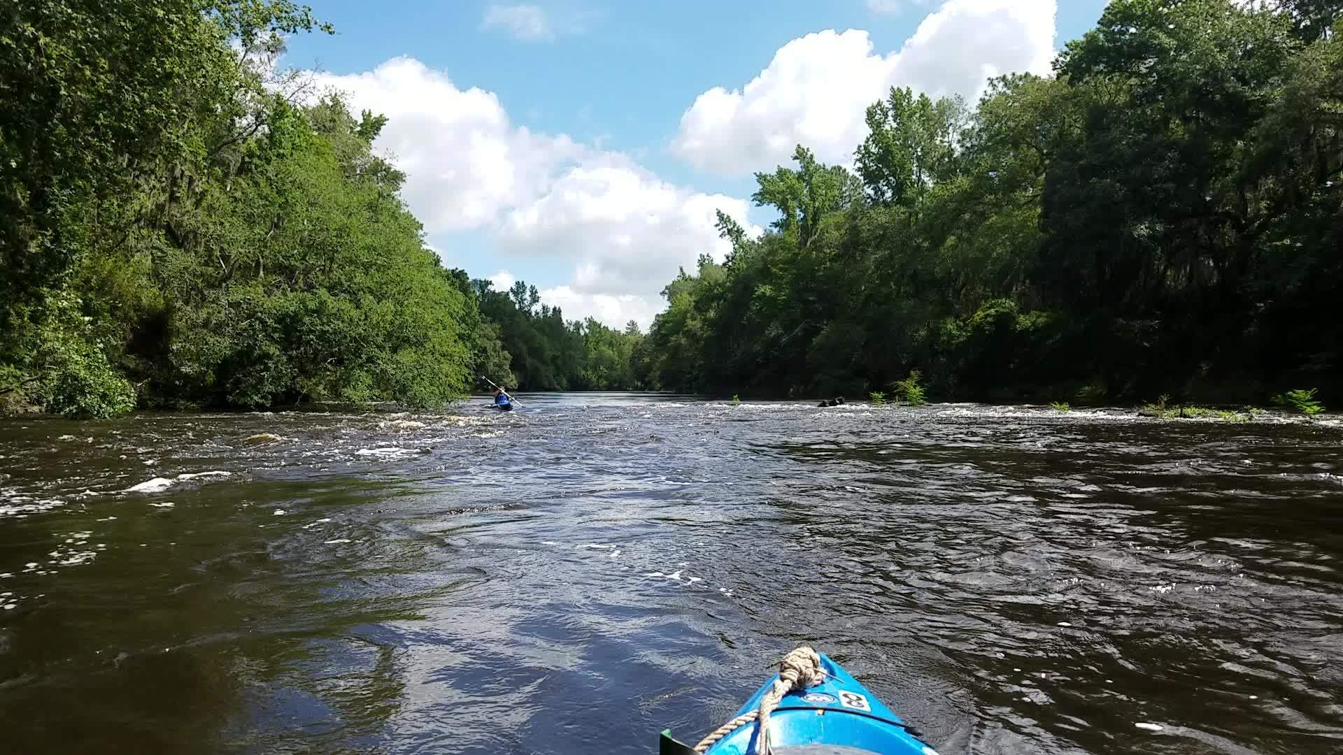 1920x1080 Movie: Tom Potter shoots some rapids (51M), 30.58135, -83.26283, in A fine day on the Withlacoochee River from Sullivan Landing to Madison Blue Spring, by John S. Quarterman, for WWALS.net, 24 June 2017