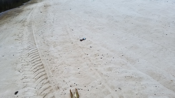 600x338 Bottles on beach, in Pafford's Landing, Alapaha River, by John S. Quarterman, for WWALS.net, 24 August 2017