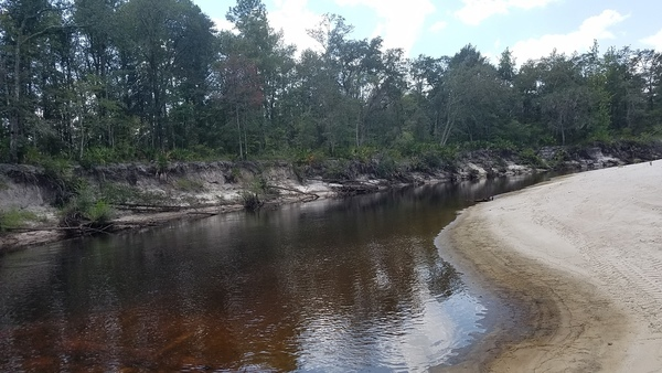 600x338 Eddy in tea-colored water, in Pafford's Landing, Alapaha River, by John S. Quarterman, for WWALS.net, 24 August 2017