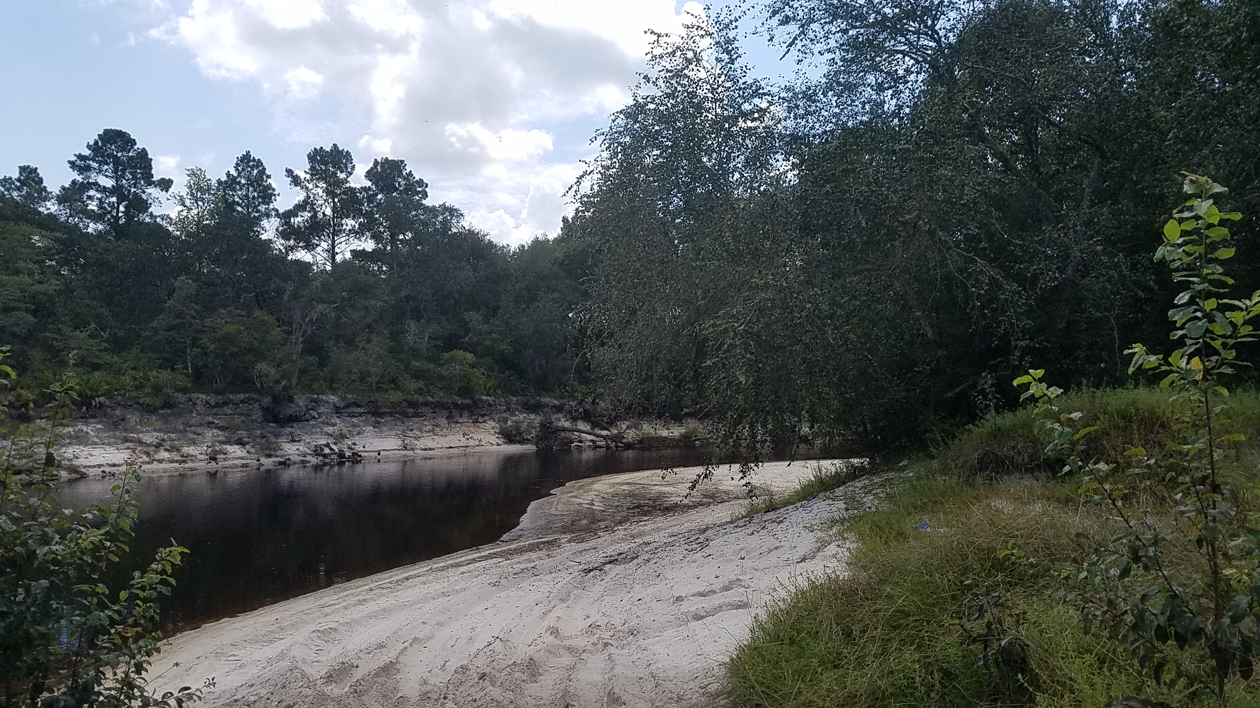 2560x1440 North river access, in Pafford's Landing, Alapaha River, by John S. Quarterman, for WWALS.net, 24 August 2017