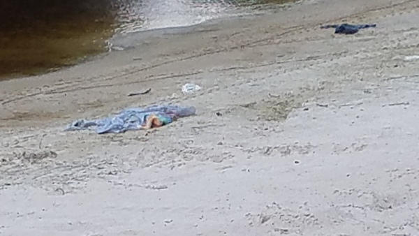 600x338 Blue and black trash, in Pafford's Landing, Alapaha River, by John S. Quarterman, for WWALS.net, 24 August 2017