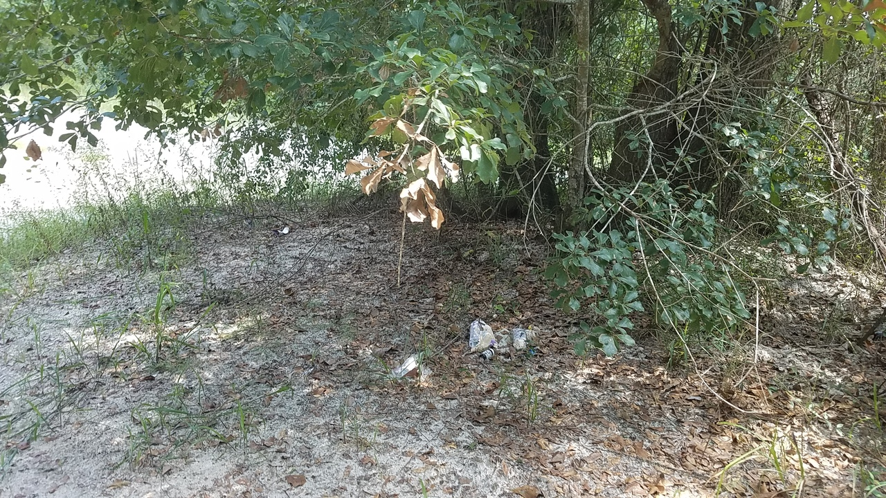 2560x1440 Old trash, in Pafford's Landing, Alapaha River, by John S. Quarterman, for WWALS.net, 24 August 2017