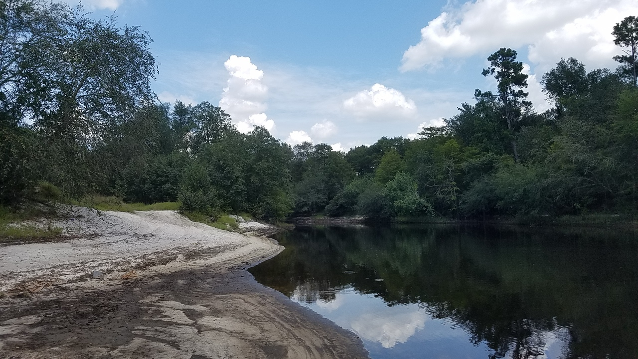 2560x1440 Upstream from the bend, in Pafford's Landing, Alapaha River, by John S. Quarterman, for WWALS.net, 24 August 2017