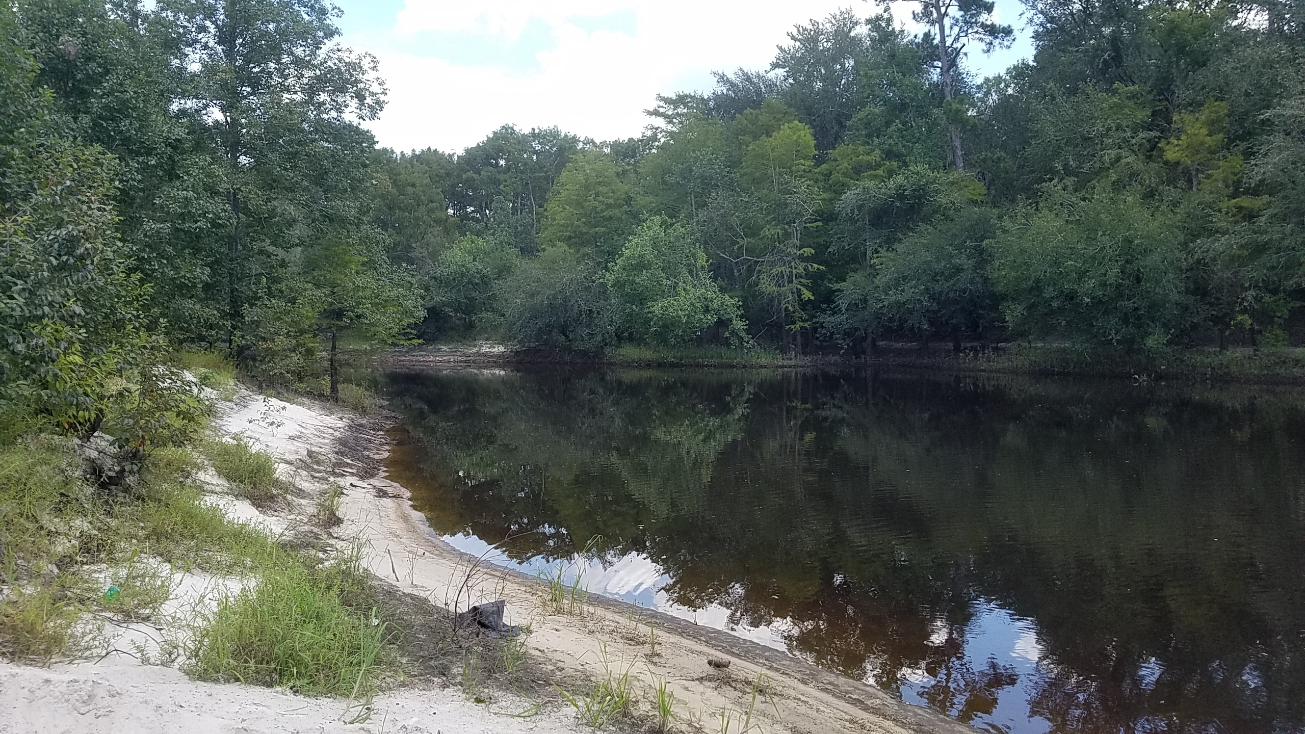 2560x1440 Upstream with trash, in Pafford's Landing, Alapaha River, by John S. Quarterman, for WWALS.net, 24 August 2017