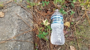 Deer Park water bottle, 13:32:26,, Upwards 30.7895772, -83.4513558