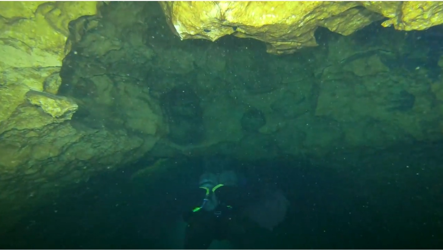 1420x804 Karst, Diving, in McIntyre Spring, by Guy Bryant, for WWALS.net, 18 November 2017