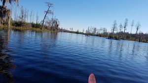 Upstream, 09:54:48,, Suwannee River 30.8319793, -82.3602952