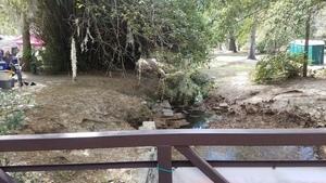 Downstream, Footbridge