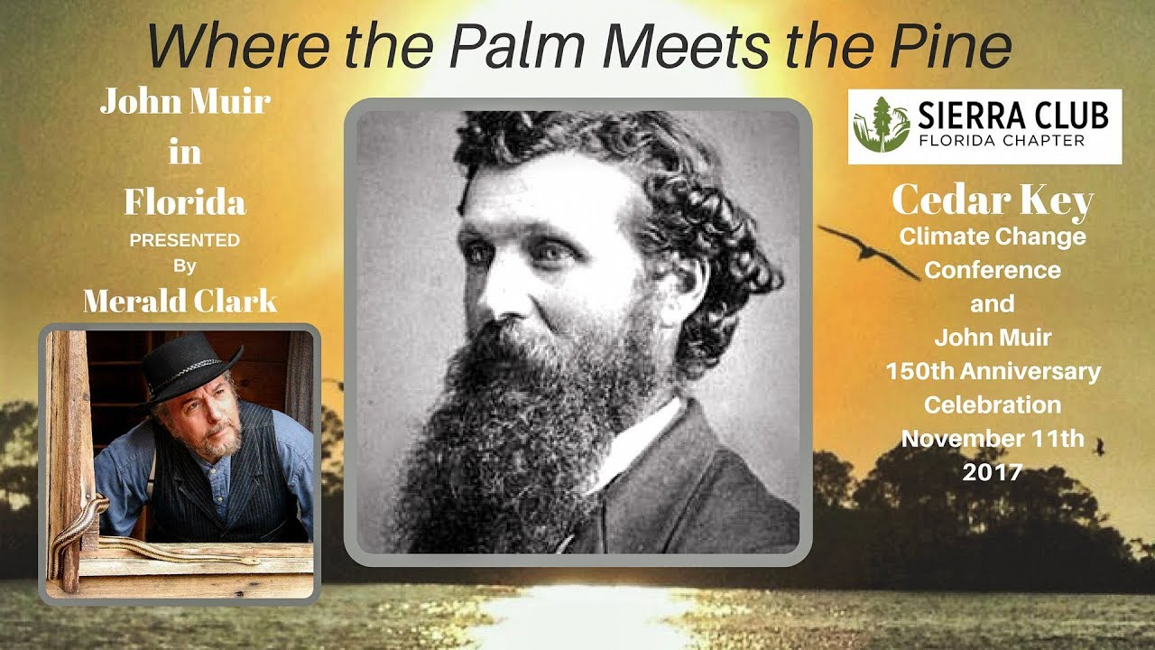 1280x720 Palms and Pines, Stills, in John Muir in Florida, by John S. Quarterman, for WWALS.net, 11 November 2017