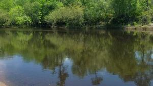 Movie: Around (6.9M), Alapaha River