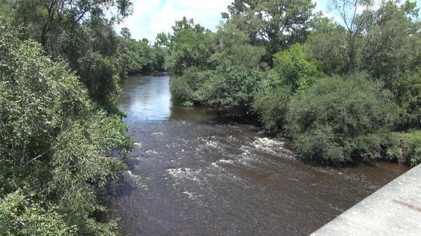 Withlacoochee River, upstream from US 84 Bridge