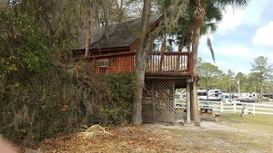 Treehouse, Stages