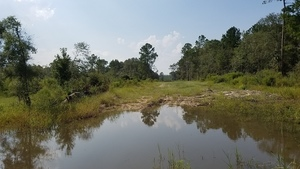 Across sinkhole, Sinkhole