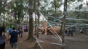 Spider web, Spirit Lake