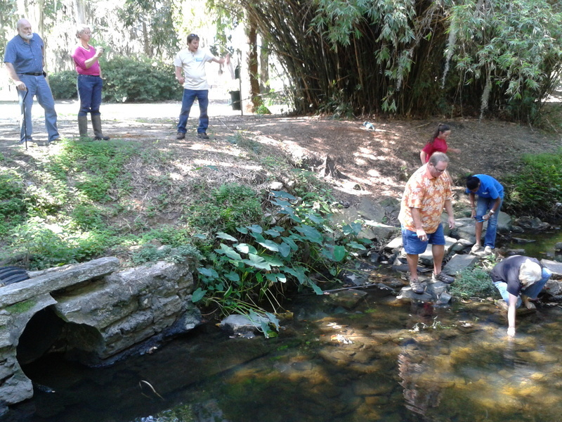 Students getting water from creek for Adopt-A-Stream water quality testing training.