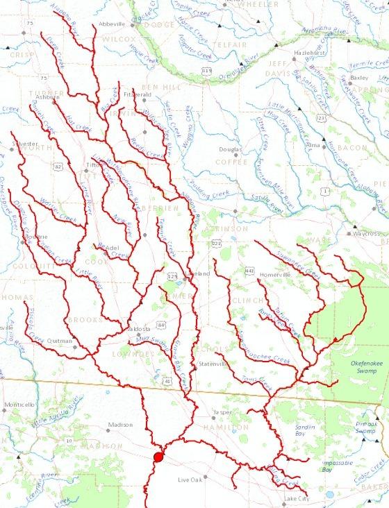 560x732 Upper Suwannee River, GA, FL, in Streamer, by John S. Quarterman, for WWALS.net, 4 July 2014