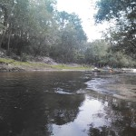 1600x1200 Downstream, in Alapaha River Outing, by John S. Quarterman, for WWALS.net, 24 August 2014