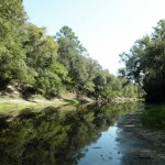 960x720 a little wider, in Alapaha, by Bret Wagenhorst, 1 September 2014