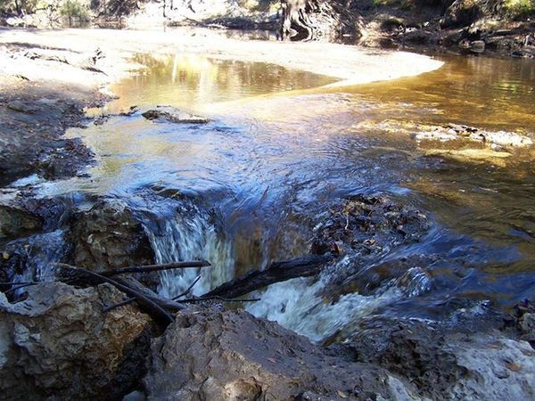 600x450 River and sink, in Alapaha River Sink, by Deanna Mericle, for WWALS.net, 11 November 2014