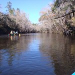 2048x1536 Upstream, in Alapaha River at Statenville, January 2014 WWALS Outing, by Gretchen Quarterman, 18 January 2014