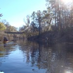 4288x3216 Heading for the boat ramp, in Alapaha River at Statenville, January 2014 WWALS Outing, by Gretchen Quarterman, 18 January 2014