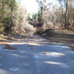 4288x3216 Top of boat ramp, in Alapaha River at Statenville, January 2014 WWALS Outing, by Gretchen Quarterman, 18 January 2014