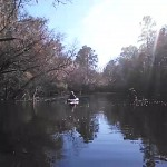 640x480 Movie: Calm water (3.8M), in Alapaha River at Statenville, January 2014 WWALS Outing, by Gretchen Quarterman, 18 January 2014
