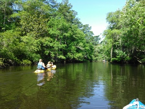 300x225 Tandem kayak, in BIG Little River Paddle Race, by John S. Quarterman, for WWALS.net, 16 May 2015
