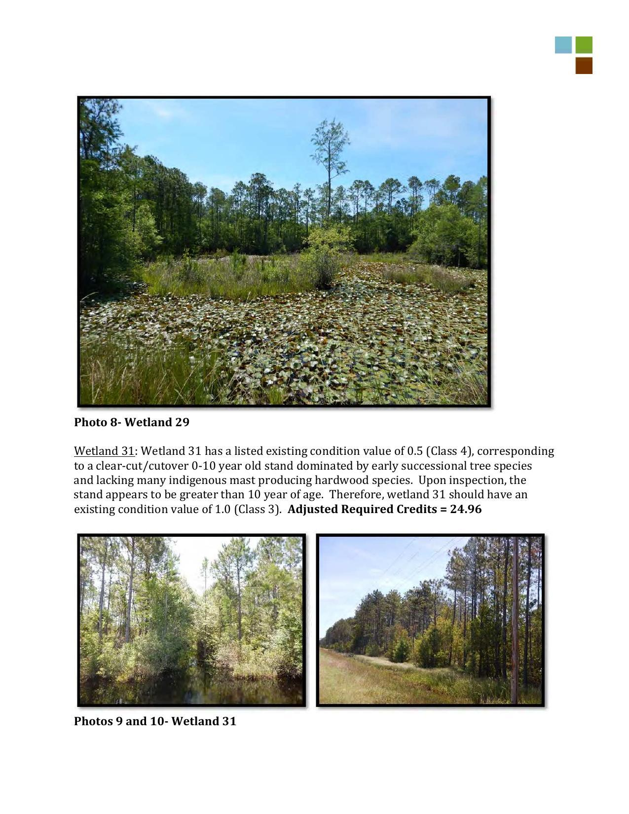 1275x1650 Wetlands 29 and 31, in RE: SAS-2014-00862, Proposed U.S. Highway 84 Widening, by Gilbert B. Rogers, for WWALS.net, 28 May 2015