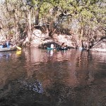 640x480 Riverside, in Statenville to Sasser Landing on the Alapaha River, by John S. Quarterman, for WWALS.net, 15 February 2015