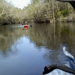800x480 Being followed, in Statenville to Sasser Landing on the Alapaha River, by John S. Quarterman, for WWALS.net, 15 February 2015