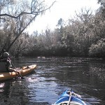 640x480 Chris Graham, in Statenville to Sasser Landing on the Alapaha River, by John S. Quarterman, for WWALS.net, 15 February 2015