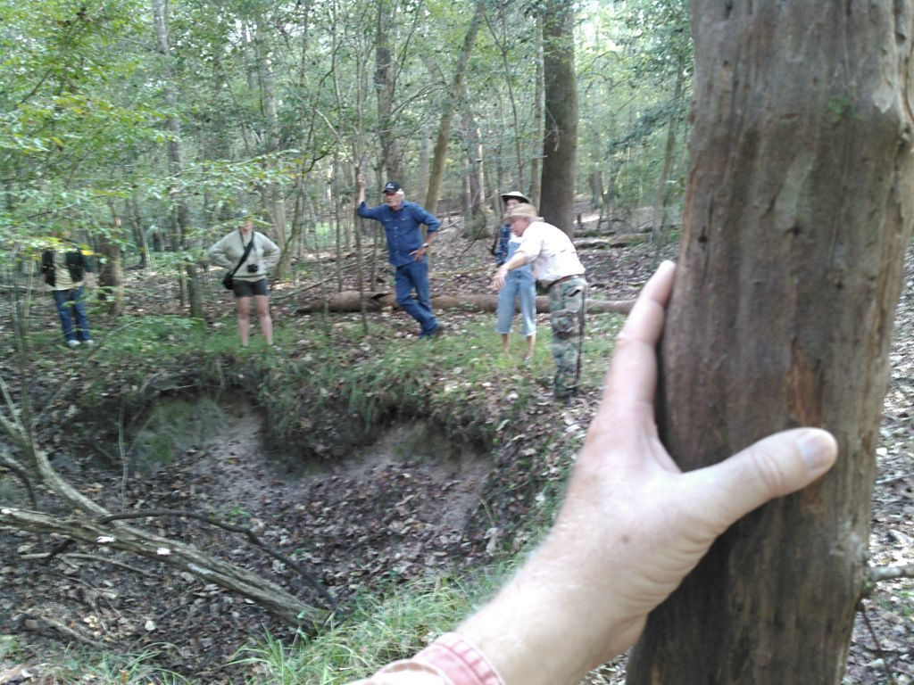 1024x768 Grapevine, sinkhole, Chris pointing down 30.4080829, -83.1612244, in WWALS Field Trip to proposed Sabal Trail Suwannee River Crossing, by John S. Quarterman, for WWALS.net, 15 November 2015