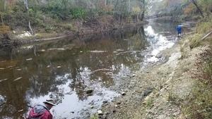 Upstream, 14:25:39,, Back down 30.7909541, -83.4631881