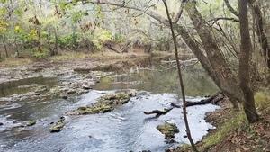 Rapids, 12:32:32,, Upstream of US 84 30.7939672, -83.4531928
