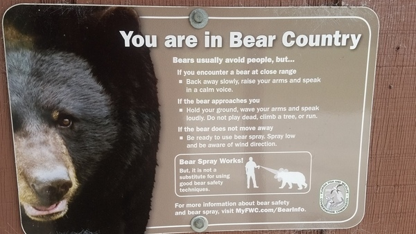 You are in Bear Country, Notices