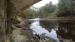 Downstream, 14:25:34,, Back down 30.7909541, -83.4631881