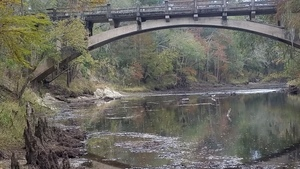 Reflected birds, 13:21:08,, Spook Bridge 30.7901551, -83.4615208
