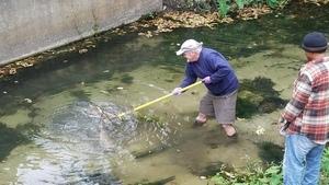 With a yard rake, Tom Potter fishing
