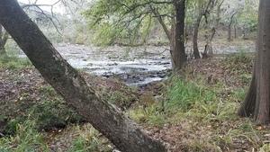 Shoals, 12:32:04,, Upstream of US 84 30.7939672, -83.4531928
