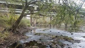 US 84 bridge, 12:34:03,, Upstream of US 84 30.7900038, -83.4585197