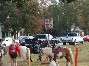 Pony Rides, Others